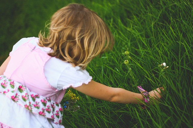 a little girl picking up a flower